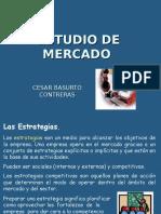EJEMPLO DE UN ESTUDIO DE MERCADO (2).ppt