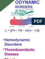 Ch4-Hemodyn