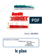 Audit Budget Marketing