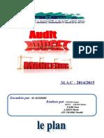 Audit Budget Marketing