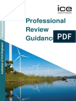 Professional Review Guidance