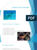 Principais Doenças Do Camarão1
