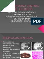 Patología higado