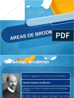 Areasdebrodmann 140928105641 Phpapp01 (1)