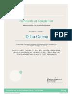 IHI Certificate - Delia Garcia