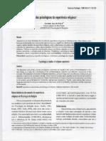 v6n2a08.pdf
