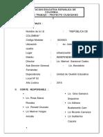 Plan de Trabajo Proyecto Ciudadano -Ok- Rosa Saenz