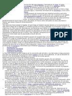 Informe de Intestino grueso y delgado.docx