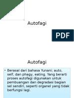 Autofagi