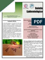 Boletin Noviembre 2015 INMP.pdf