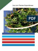 Nutrição Intuitiva Com Plantas Espontâneas