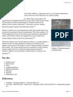 Anthelion - Wikipedia, the free encyclopedia.pdf