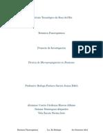 Proyecto de Investigacion - Botanica Fanerogamica