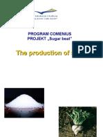 The Production of Sugarkkkk