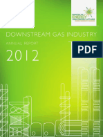 Downstream Gas Industry Annual Report 2012