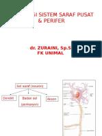 Histologi Sistem Saraf Pusat & Perifer