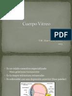 FO C Vitreo