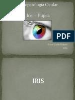FO Iris Pupila