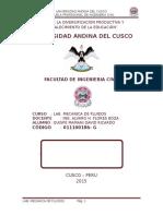 ENSAYO-LAB-FLUIDOS-NRO2.docx