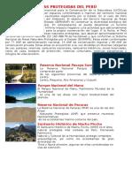 AREAS PROTEGIDAS DEL PERÚ.docx