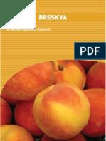 F23.0 Fresh Peaches Guide