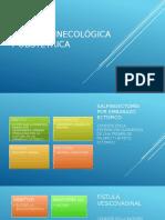 Cirugía Ginecológica y Obstétrica