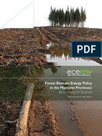 Forest Biomass Energy Policy in the Maritime Provinces