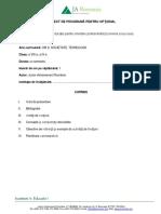 Economia-si-succesul Programa Si Planificare 2015-Vf(1)