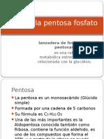 Ruta de La Pentosa Fosfato1