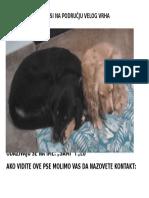Traže Se Odlutali Psi Na Području Velog Vrha