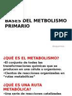 1. BASES DEL METBOLISMO PRIMARIO.pptx
