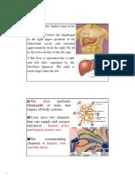 Assessment of Liver Functions u062F u0635u0627u0628u0631