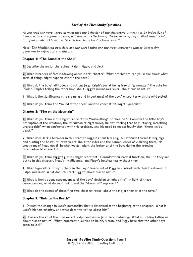 essay fly lord question Lord of the flies essay questions directions: you will be writing a précis on the lord of the flies choose one of the essay prompts below as the topic for your paper if you would like to write about a different topic, you must get it approved by me before you begin 1 develop an explanation of why some critics feel that golding's main.