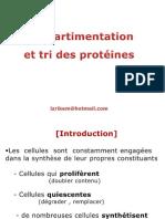 Tri Proteine 2014-15