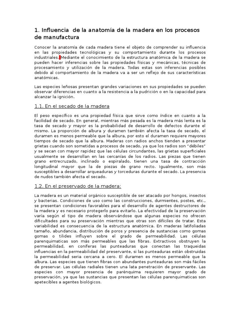 Increíble La Anatomía De La Influencia Molde - Anatomía de Las ...