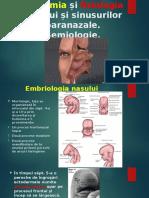 Embriologia, Anatomia Și Fiziologia Nasului Și Sinusurilor