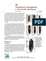 Wireworm - Biology and Nonchemical Management in Potatoes