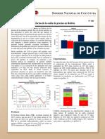 Coy 300 - Efectos de la caída de precios en Bolivia.pdf