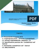 Importanta Directiei Contabile in Cadrul Grupului b