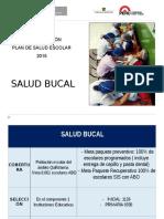 Escolar Salud Bucal 2015 16 Junio