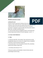 Contoh jurnal kesehatan masyarakat ui