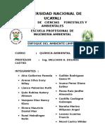 QUIMICA-AMBIENTAL-UNU