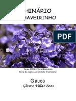 Glauco - Chaveirinho