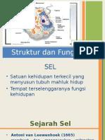 Struktur Fungsi Sel