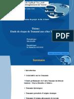 Modélisation du tsunami aux cotes Tunisienne