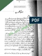 260741995 Zindagi Gulzar Hai Umaira Ahmad