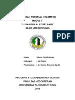 Modul 2 Urogenital INDVDU