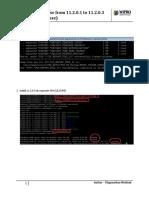Upgrade Database From 11.2.0.1 to 11.2.0.3 (IDM DEV Database)