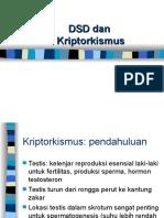 DSD Dan Kriptorkismus