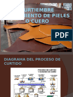 presentacion proceso del cuero
